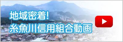 地域密着!糸魚川信用組合